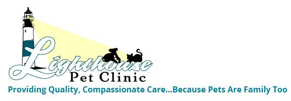 Lighthouse Pet Clinic